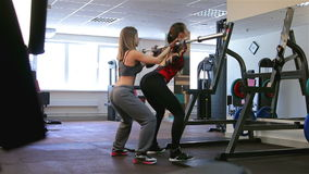 Bodyfitness workout. Squat with weight stock video footage