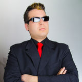 The Bodyguard Stock Photography