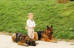 Bodyguards. Stock Images