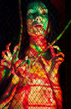 BodyPaint female throught the lattice Stock Photo