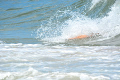 Bodysurfer Catching a Wave Stock Images