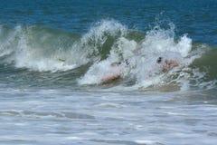 Bodysurfers, das eine Welle fängt Stockbild