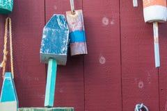 Boe multicolori su esposizione Immagine Stock Libera da Diritti