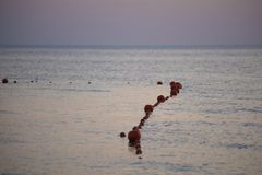 Boe rosse nel mare sulla spiaggia nella sera al tramonto fotografia stock