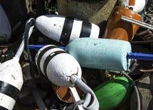 Boe variopinte dell'aragosta della Maine Fotografie Stock