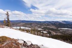 Boeal forest taiga hills spring Yukon Canada Royalty Free Stock Photo