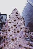 Boedapest, Hongarije - Gloeiende Kerstboom en toeristen op de bezige Vaci-straat, de beroemde het winkelen straat van Boedapest i stock foto's