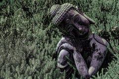 Boeddhisme en aard Hoog-contrastbeeld van traditionele Boedha s royalty-vrije stock afbeelding