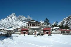 Boeddhistisch klooster in het Himalayagebergte Stock Fotografie