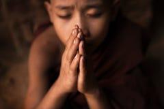 Boeddhistische beginnermonniken die in tempel bidden royalty-vrije stock afbeeldingen