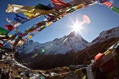 Boeddhistische gebedvlaggen Stock Foto