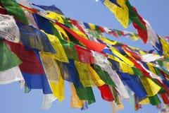 Boeddhistische Godsdienstige Vlag in Boudhanath, Nepal Royalty-vrije Stock Foto