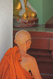 Boeddhistische Monnik Stock Afbeeldingen