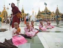 Boeddhistische monniken in de Shwedagon-tempel, Yangon, Myanmar stock foto