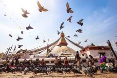 Boeddhistische stupa in Katmandu, Nepal royalty-vrije stock foto