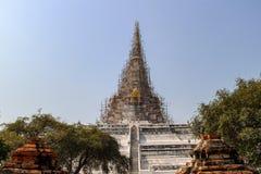 Boeddhistische tempel met oude stupa in Ayutthaya, Thailand stock afbeeldingen