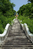 Boeddhistische tempel op heuveltop stock foto's