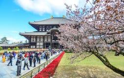 Boeddhistische tempel Todai -todai-ji met kersenbloem royalty-vrije stock foto's