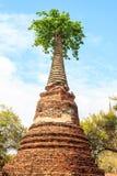 Boeddhistische tempelruïnes Stock Foto's