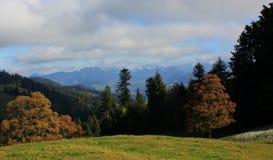 Boedele Österreich Stockbild