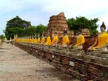 Boedha in Ayutthaya-tempel Stock Afbeeldingen