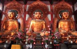 Boedha bij de Tempel van de Zes Banyan-Bomen of Baozhuangyan Tem Stock Foto's