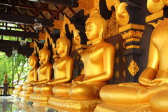 Boedha in een tempel van Thailand Royalty-vrije Stock Foto's