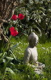 Boedha en tulpen Stock Foto's