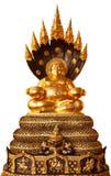 Boedha in geïsoleerdei meditatie Royalty-vrije Stock Afbeeldingen