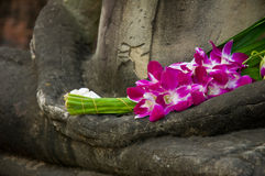 Boedha in meditatiepositie, Orchideeën stock afbeeldingen