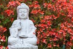 Boedha onder geraniums Royalty-vrije Stock Afbeelding