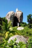 Boedha op de rots Stock Afbeeldingen