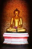 Boedha in oude tempel Stock Fotografie