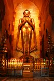 Boedha in oude tempel Stock Afbeelding