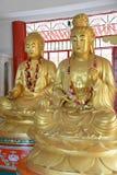 Boedha in Thailand Royalty-vrije Stock Foto's