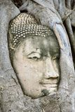 Boedha Wat Mahathat Maha That royalty-vrije stock foto