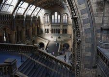 boehm Charles Darwin大厅历史记录包括约瑟夫主要博物馆自然先生雕象视图 库存照片