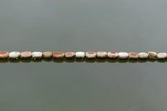 Boei in de rivier Stock Foto