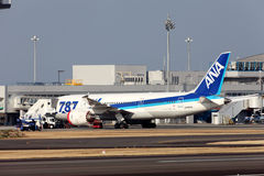 Boeing 787 som landas i nöd- Royaltyfri Fotografi