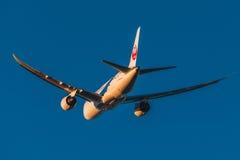 Boeing 787-8 Dreamliner Japan Airlines tar av på solnedgång Arkivbilder