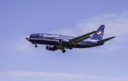 Boeing 737-36E - cargaison d'oiseau bleu photo stock