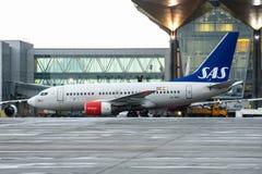 Boeing 737 SAS flygbolag, flygplats Pulkovo, Ryssland St Petersburg 22 November, 2017 Royaltyfri Foto
