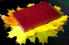 Boek die op de bladeren van de de herfstesdoorn liggen Royalty-vrije Stock Foto's