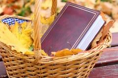 Boek in een mand Stock Afbeelding