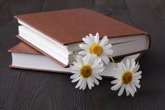 Boek en daisie bloem op houten lijst stock foto