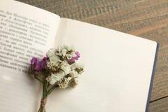 Boek en droge bloemen Royalty-vrije Stock Foto's