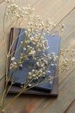 Boek en droge bloemen Royalty-vrije Stock Fotografie