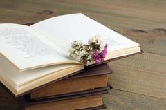 Boek en droge bloemen Stock Afbeeldingen