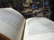 Boek in het hout stock fotografie