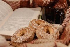 Boek, koekjes en hete thee Stock Afbeelding
